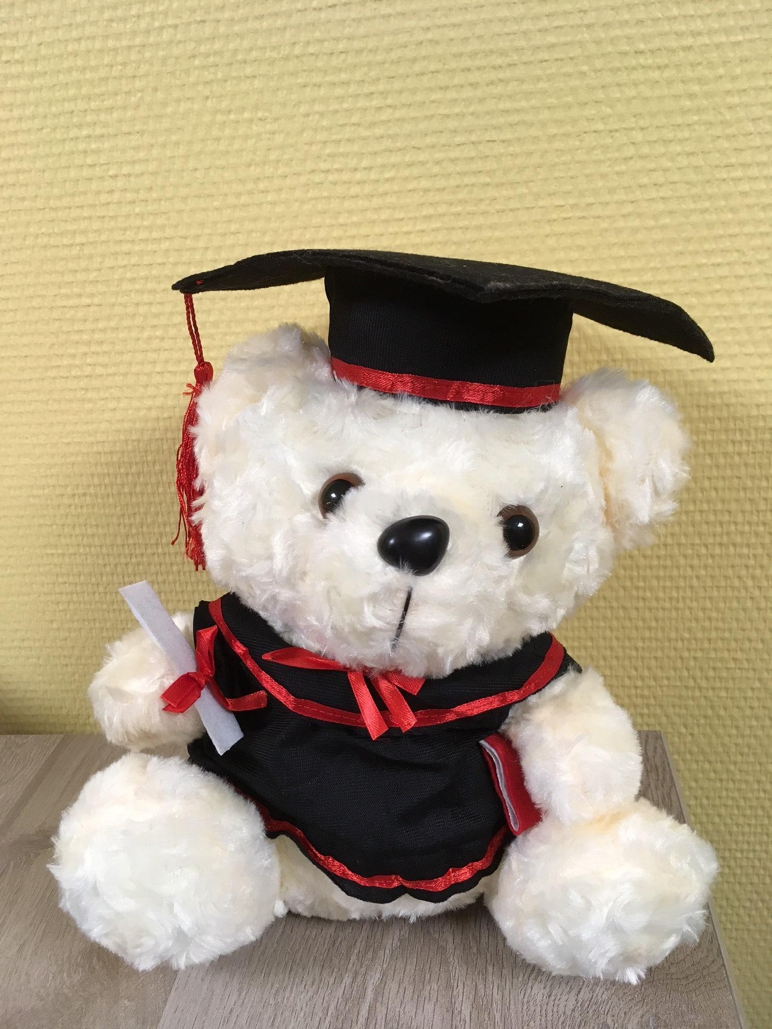 White_Graduation_teddy_bear