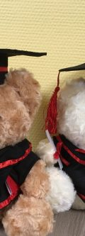Graduation_teddy_bear