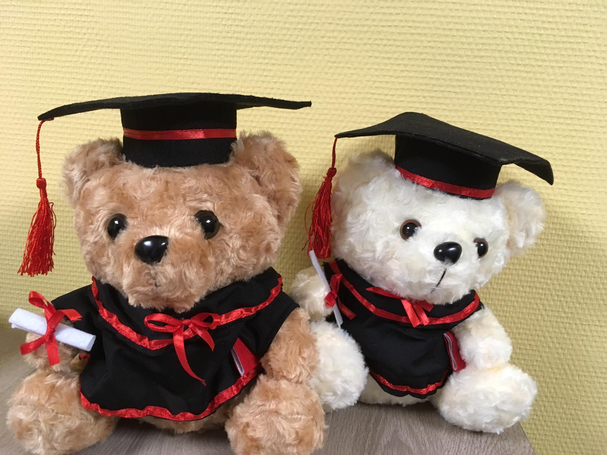 Graduation_teddy_bear
